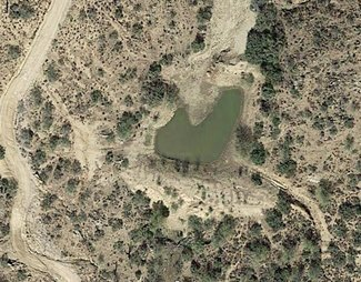 Pond satellite view