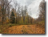 Michigan Land 19 Acres TBD M-95, Channing Mls 1111767
