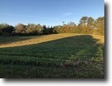 6 Acre Building Site In Hart County, KY