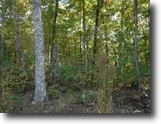 Tennessee Land 11 Acres 11.14 Ac Wooded & Level To Gentle Roll