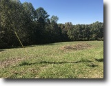 Kentucky Land 12 Acres land in Green County KY