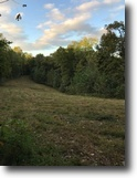 13 Acre Hunting Cabin In Metcalfe Co, KY