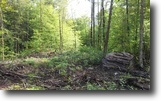 108 acres with Beaver pond Bellmont NY