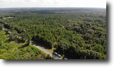 Florida Land 39 Acres Butler Road East