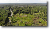 Florida Land 46 Acres Butler Road West
