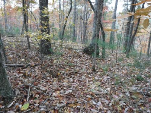 house & land in private country location property moss tennessee