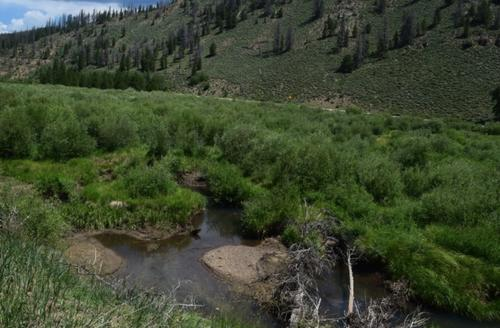 claim creek colorado