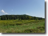 Tennessee Land 12 Acres 12.37ac Open Pasture Level To Rolling