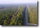 Florida Hunting Land 71 Acres SR 24 Timberland