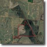 For Sale – 225+/- Acres of Land