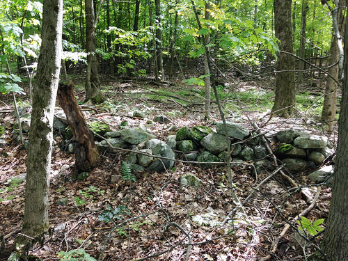 house & land cabin hunting putnam station ny property