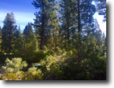 California Land 1 Acres Premier Homesite