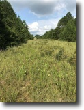 80 acre hunting acreage,with creek