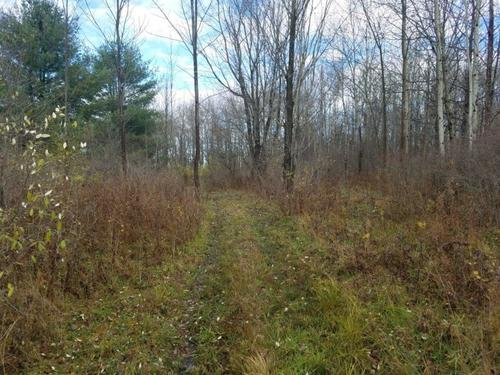 acreage farmland caton ny church creek rd property