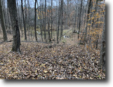 23 acres Hunt Belfast NY 6962 Gleason Hill