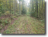 213 acres Timber Chemung NY Murphy Hill Rd