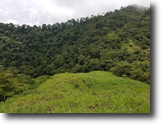 Provincia de Puntarenas Land 60 Hectars Property For Preservation of Environment