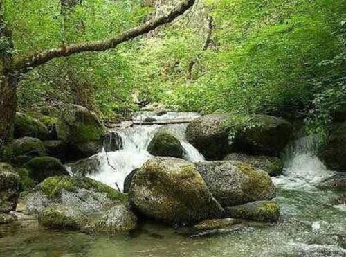 boulder creek, claim creek california