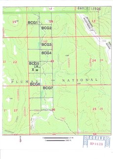 Claim BLM topography map