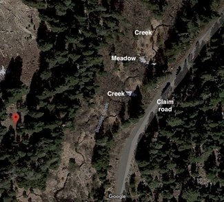 Satellite view, meadow and creek