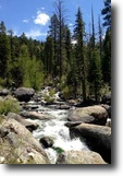 California Hunting Land 40 Acres 40 ac California MiningClaim River Meadows