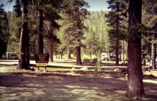 bloomfiled campground california