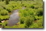 Colorado Hunting Land 40 Acres $500/mo 40 ac Creek on ColoradoMiningClaim