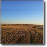 Saskatchewan Ranch Land 480 Acres Saskatchewan land with oil and 5.5% Return