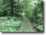 86 acres Hunting in Stockton NY Route 380
