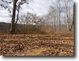 Tennessee Farm Land 24 Acres 24.36ac  Surround By Us Corp–Close To Lake