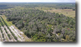 SW Hardee County Hunting 80 Acres