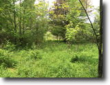 14 acres Hunting Cuba NY Spring Hill Road