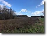 Virginia Farm Land 74 Acres Farm