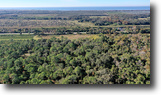 Okeechobee 28 Acres