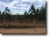 Mississippi Ranch Land 31 Acres Ms Hwy 15 S, Newton, MS 39345