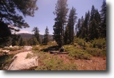 20.49 Acres Power/Well/Septic  Truckee, CA