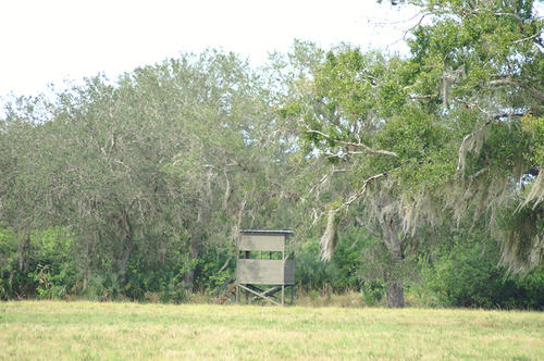rock lake ranch property clewiston florida