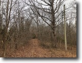 10 Acres Wooded In Green County, KY