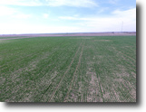 Kansas Farm Land 72 Acres Row Crop Farm in Scott County KS