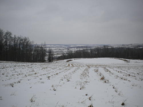 acreage organic farmland cherry valley ny investment property