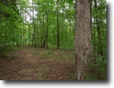 Tennessee Hunting Land 156 Acres 156.13 ac Totally wooded,Ideal hunting