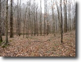 Tennessee Hunting Land 73 Acres 72.71ac, 1200+ Elevation,Creek,Build Sites