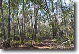 Florida Land 34 Acres 7251 NE 227th Place