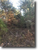 Mississippi Hunting Land 382 Acres 381.59ac - Hwy 12 W, Starkville, Ms 39759