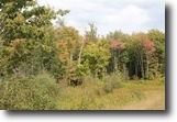 Michigan Land 3 Acres TBD Stenson Rd, Covington, 1112634