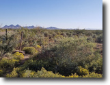 New Mexico Land 1 Acres New Mexico Building Lot 1/2 ac. Mnt. Views