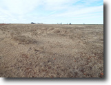 3/12/19 Auction 160± Acres Grass Pasture