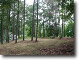 Tennessee Hunting Land 94 Acres 93.94Ac, Creek, Hunters Paradise, Secluded