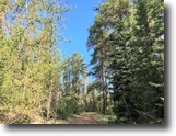 File 19 –50.1 Acre Hunting Property