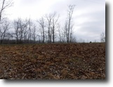 Tennessee Farm Land 5 Acres 5+ Ac w/Mtn Views In  Secluded Location